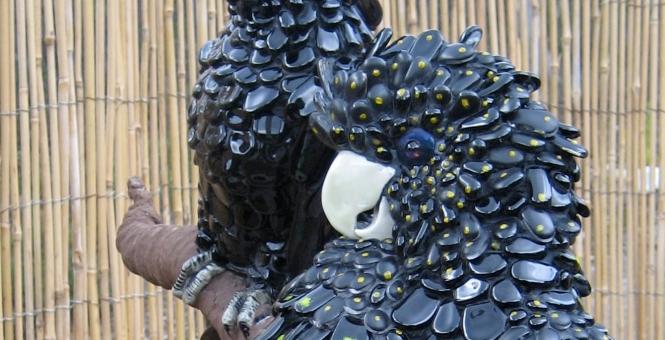 Cockatoos-heads