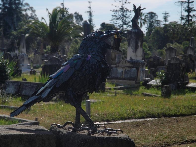 install raven